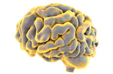 Assistenzarzt für Neurologie (m/w/d)