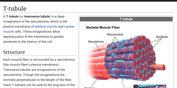 WikiMed-Medical-Encyclopedia-Screenshot