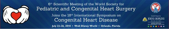6th Scientific Meeting of the World Society for Pediatric and Congenital Heart Surgery