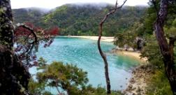 © Simon Raffl, Stilwell Bay, Abel Tasman National Park, South Island